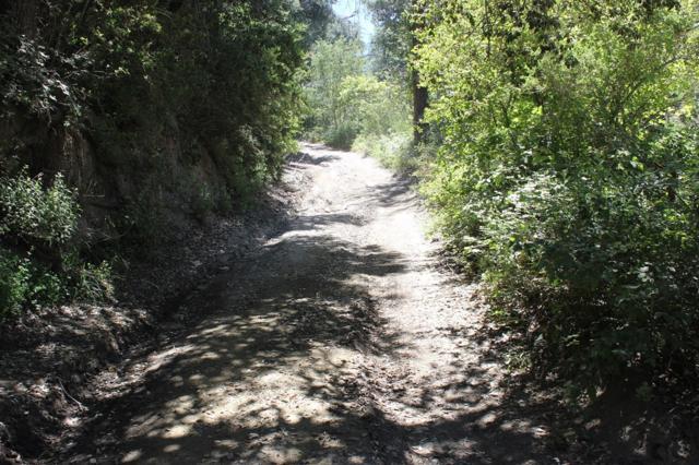 0 Boulder Creek Rd. #0, Julian, CA 92036 (#180028432) :: Beachside Realty