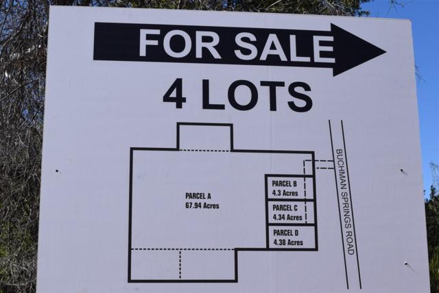 0 Buckman Springs C, Campo, CA 91906 (#180029573) :: Ascent Real Estate, Inc.