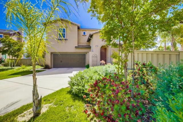 31213 Black Maple Dr, Temecula, CA 92592 (#180029666) :: Neuman & Neuman Real Estate Inc.
