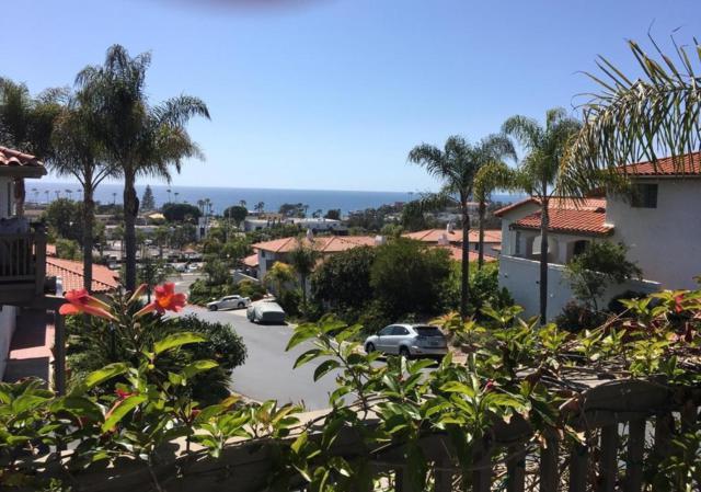 407 Paseo Pacifica, Encinitas, CA 92024 (#180029901) :: Neuman & Neuman Real Estate Inc.