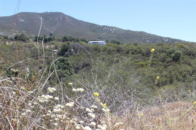 33980 Red Mountain Road, Hemet, CA 92544 (#180031721) :: Farland Realty