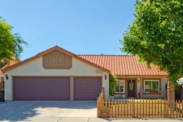 32675 Cherrywood Lane, Lake Elsinore, CA 92530 (#180032569) :: Neuman & Neuman Real Estate Inc.
