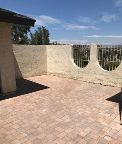 11073 Plum Tree Lane, Spring Valley, CA 91977 (#180032797) :: Ascent Real Estate, Inc.