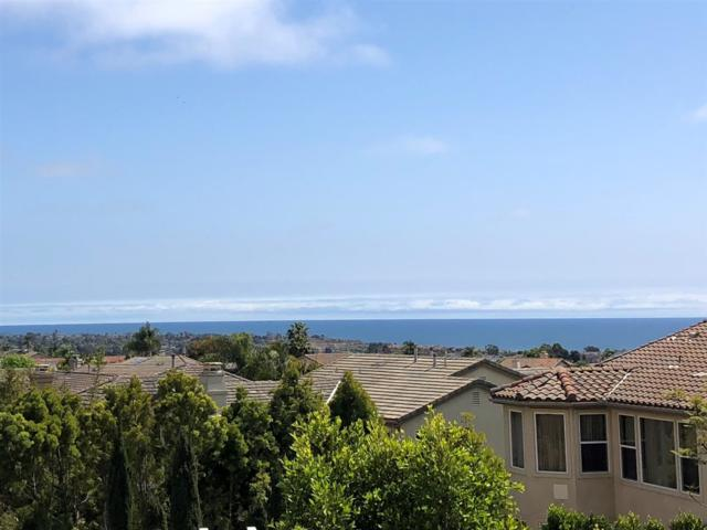 7060 Cordgrass Court, Carlsbad, CA 92011 (#180033045) :: Allison James Estates and Homes