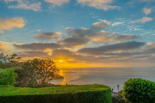 1585 Coast Walk, La Jolla, CA 92037 (#180033153) :: Douglas Elliman - Ruth Pugh Group