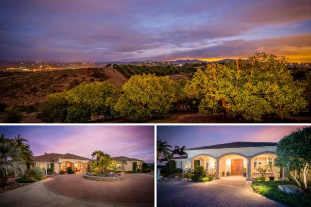 5365 Camino Jasmine, Bonsall, CA 92003 (#180033686) :: The Marelly Group | Compass