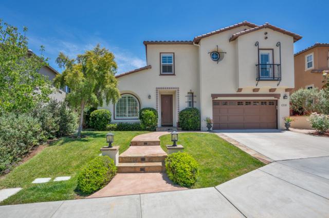 1281 Holmgrove Drive, San Marcos, CA 92078 (#180033733) :: Ghio Panissidi & Associates