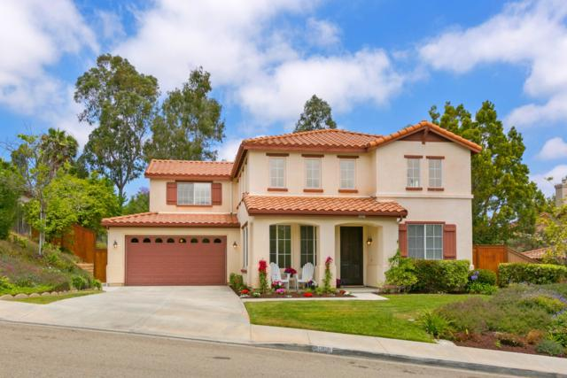8008 Paseo Aliso, Carlsbad, CA 92009 (#180033946) :: Ascent Real Estate, Inc.