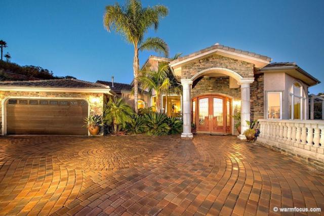 6372 Rockhurst Dr, San Diego, CA 92120 (#180036023) :: Heller The Home Seller