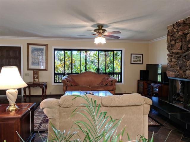 9423 Haley Lane, La Mesa, CA 91941 (#180036554) :: Neuman & Neuman Real Estate Inc.