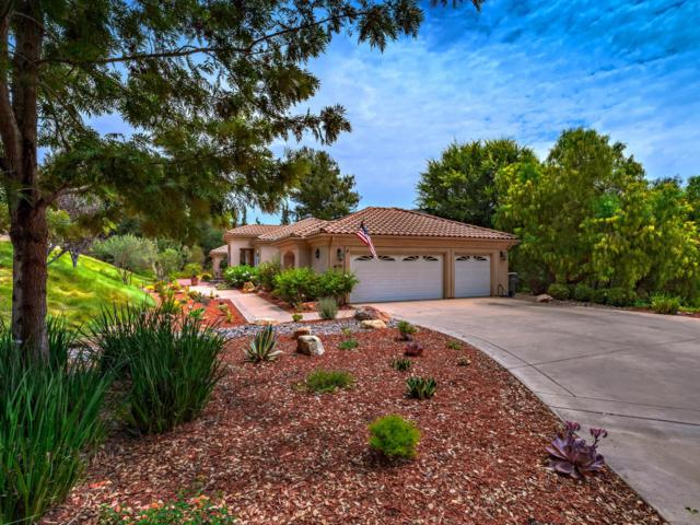 4055 Millagra Dr, Fallbrook, CA 92028 (#180038096) :: The Yarbrough Group