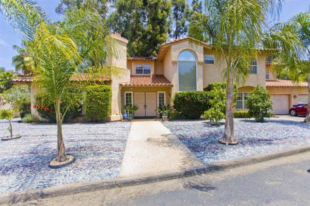9742 Raspberry Ice Lane, La Mesa, CA 91941 (#180039056) :: Douglas Elliman - Ruth Pugh Group