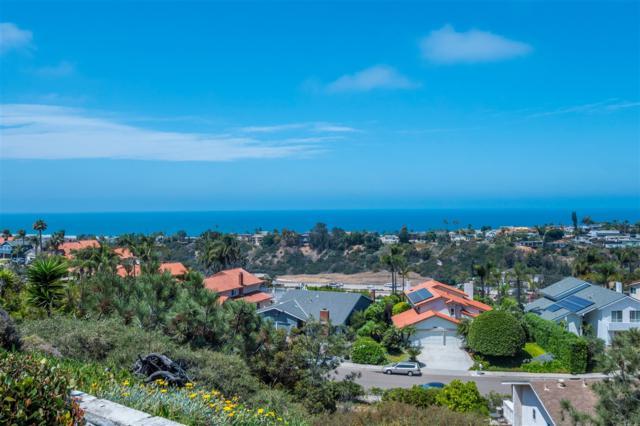 2026 Freda Lane, Cardiff, CA 92007 (#180039360) :: eXp Realty of California Inc.
