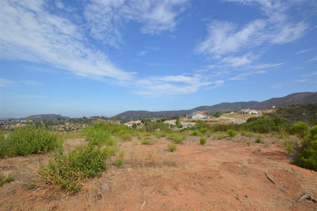 13.93 AC Jamul Highlands #54, JAM, CA 91935 (#180039919) :: Keller Williams - Triolo Realty Group