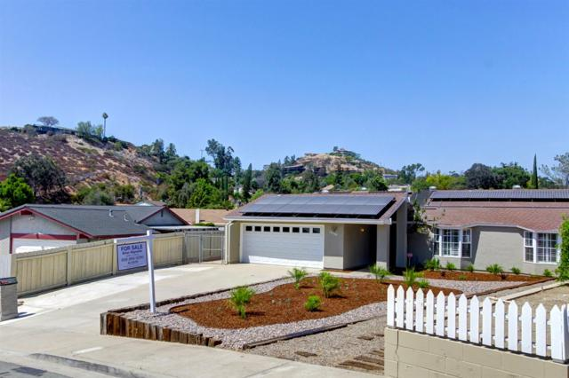 10208 Alta Terrace, La Mesa, CA 91941 (#180040205) :: Neuman & Neuman Real Estate Inc.
