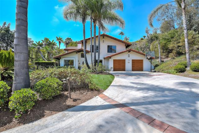 2205 Running Spring Pl, Encinitas, CA 92024 (#180041659) :: The Yarbrough Group