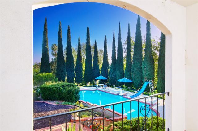 9430 Mesa Vista Avenue, La Mesa, CA 91941 (#180042164) :: Keller Williams - Triolo Realty Group