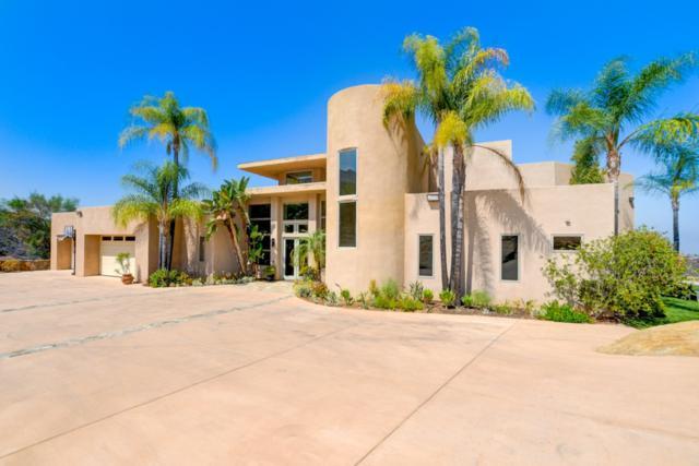 15389 Rocky Mountain Road, Jamul, CA 91935 (#180042465) :: Beachside Realty