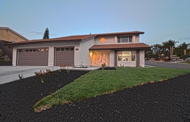 3925 Rock River Lane, San Diego, CA 91902 (#180042538) :: Keller Williams - Triolo Realty Group