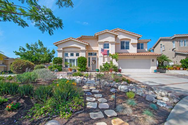 1169 Corte Cadiz, Oceanside, CA 92057 (#180043234) :: Keller Williams - Triolo Realty Group