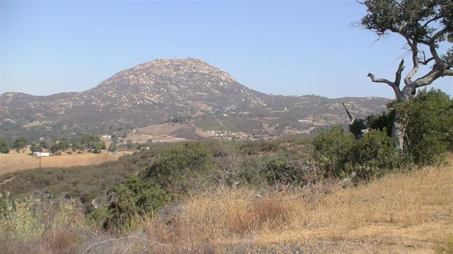 18842 Deerhorn Valley Road Parcel 2, Parce, Jamul, CA 91935 (#180043628) :: Farland Realty