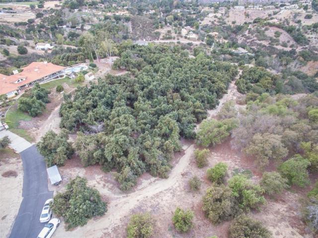 1218 Knoll Park Ln #1, Fallbrook, CA 92028 (#180043850) :: Neuman & Neuman Real Estate Inc.