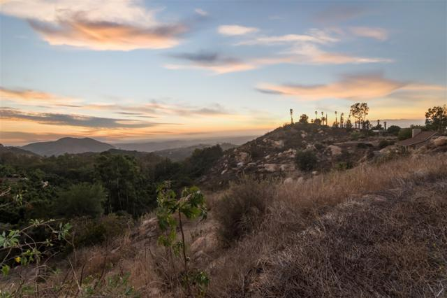 6189 Rainbow Heights Rd - Lot B B, Fallbrook, CA 92028 (#180044011) :: Kim Meeker Realty Group
