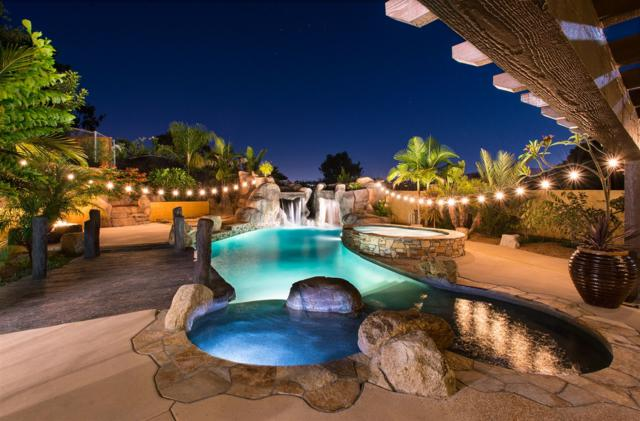 3020 Levante St, Carlsbad, CA 92009 (#180044977) :: The Yarbrough Group
