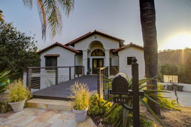 1043 Laura Lane, Escondido, CA 92025 (#180045984) :: Keller Williams - Triolo Realty Group