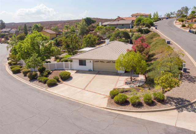 15751 Rainbird Rd., Ramona, CA 92065 (#180046108) :: The Yarbrough Group
