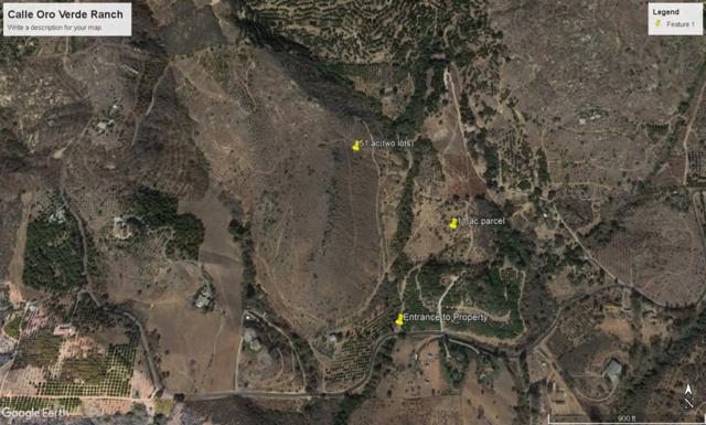 0000 Calle Oro Verde #15, Valley Center, CA 92082 (#180046177) :: Keller Williams - Triolo Realty Group