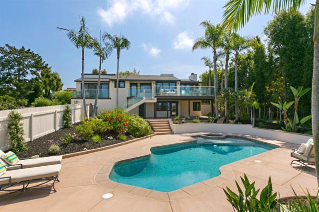 744 Avocado Place, Del Mar, CA 92014 (#180046327) :: Coldwell Banker Residential Brokerage