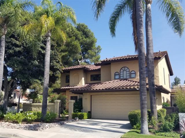 5245 Caminito Providencia, Rancho Santa Fe, CA 92067 (#180046373) :: Neuman & Neuman Real Estate Inc.
