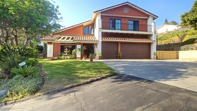 3069 Bonita Woods Drive, Bonita, CA 91902 (#180047778) :: Keller Williams - Triolo Realty Group