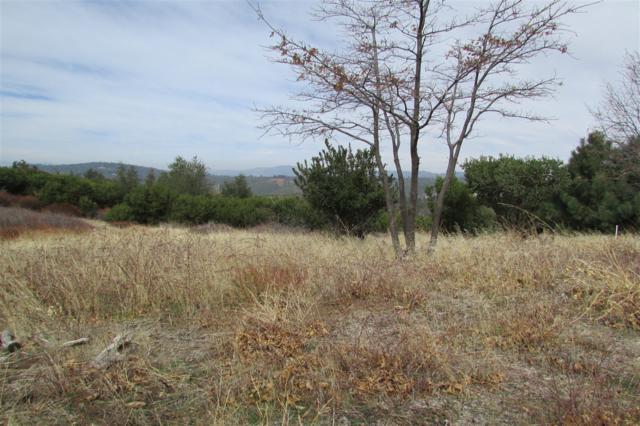 2774 Shady Acres Lane -, Julian, CA 92036 (#180048100) :: Neuman & Neuman Real Estate Inc.