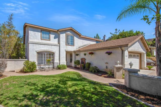 9625 Pino Dr, Lakeside, CA 92040 (#180049992) :: Whissel Realty