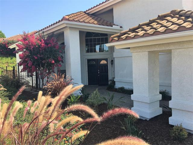 1012 Carryll Park Ct, Fallbrook, CA 92028 (#180050693) :: Impact Real Estate
