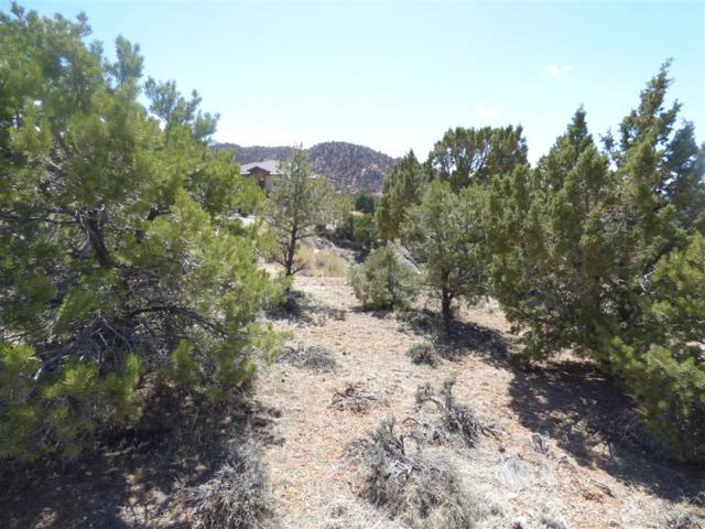 658 Canyon Ridge Drive 999-999-9999, Cedar City, UT 88888 (#180051547) :: Keller Williams - Triolo Realty Group