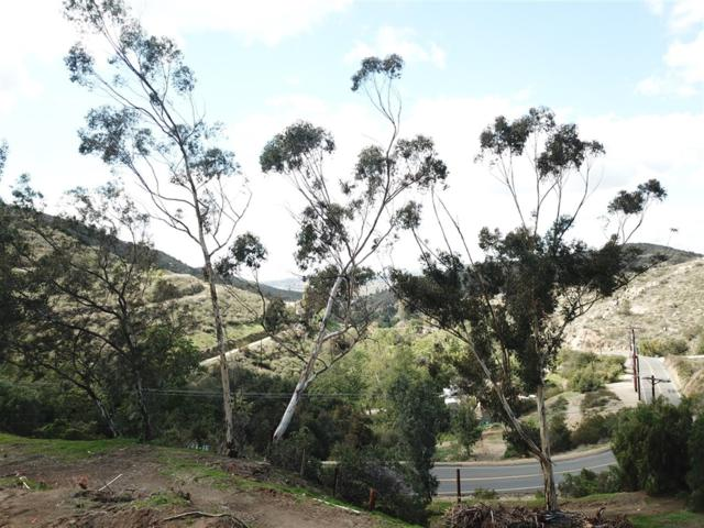 13790 Jamul Drive #13790, Jamul, CA 91935 (#180051710) :: Farland Realty