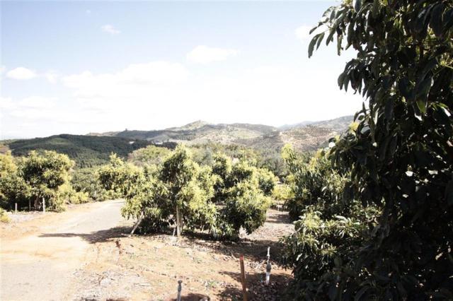 Camino De Las Lomas #2, Escondido, CA 92026 (#180052066) :: Heller The Home Seller