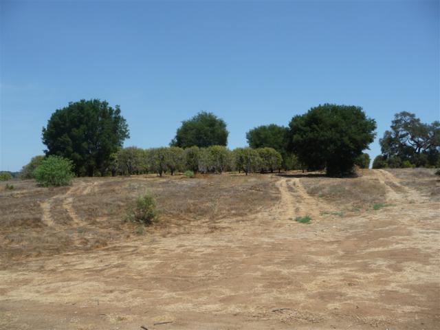 Olive Hill Rd Par 2 #2, Fallbrook, CA 92028 (#180052327) :: The Yarbrough Group