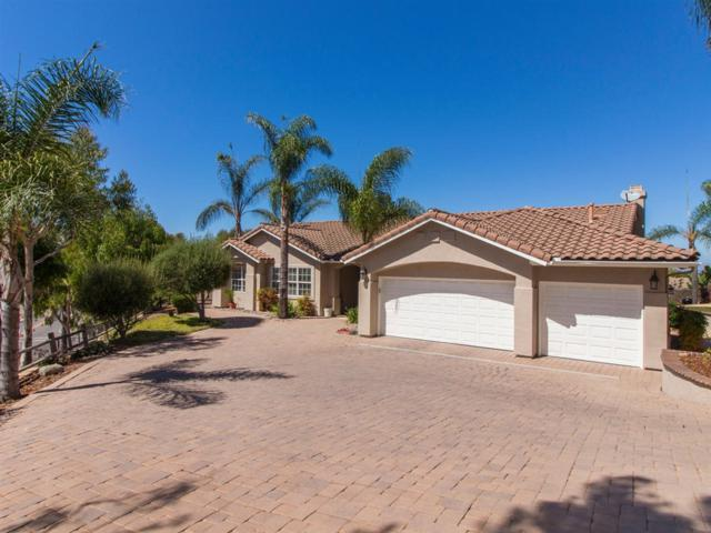 1927 Golden Hill Drive, Vista, CA 92084 (#180052875) :: Whissel Realty