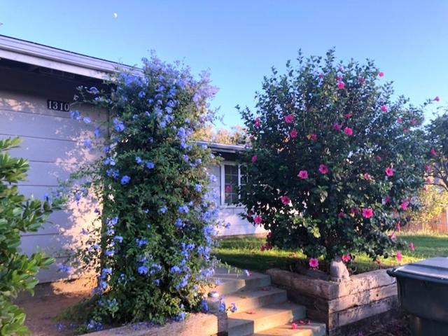 1310 Rees, Escondido, CA 92026 (#180053034) :: Heller The Home Seller