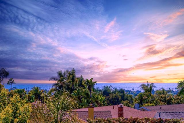 3785 Highland Dr, Carlsbad, CA 92008 (#180053215) :: The Yarbrough Group