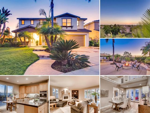 6477 Seaport Place, Carlsbad, CA 92011 (#180053418) :: PacifiCal Realty Group
