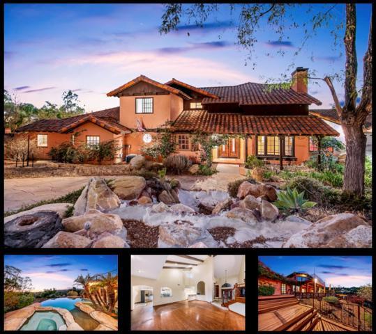 9802 Quail Canyon Rd, El Cajon, CA 92021 (#180053599) :: Coldwell Banker Residential Brokerage