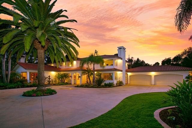 660 Lucylle Lane, Encinitas, CA 92024 (#180053623) :: Douglas Elliman - Ruth Pugh Group