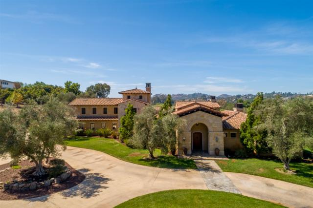 17 Gateview Dr, Fallbrook, CA 92028 (#180055526) :: Neuman & Neuman Real Estate Inc.
