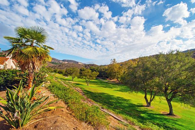 2286 Vista Valley Ln, Vista, CA 92084 (#180056181) :: Keller Williams - Triolo Realty Group