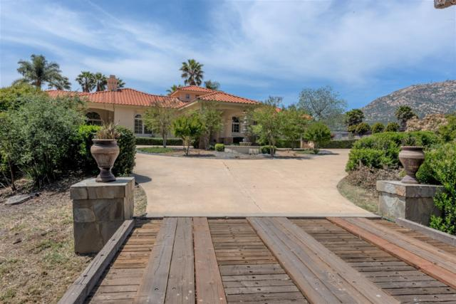 2352 White Wing Dr, Jamul, CA 91935 (#180056857) :: Douglas Elliman - Ruth Pugh Group